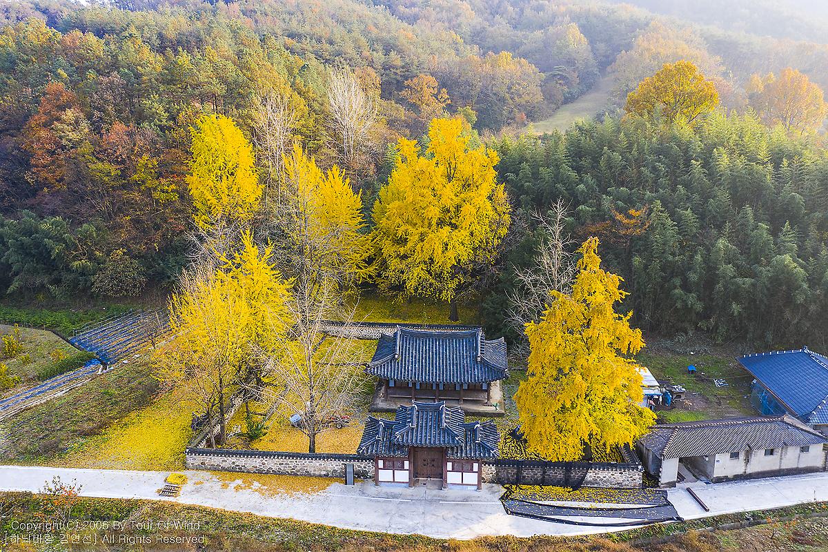아름다운 색으로 물든 가을을 만나다-장성 오천재