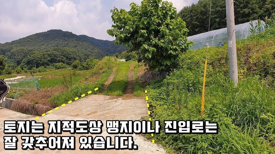 야트막한 산 아래 언덕 위의 조용한 환경의 토지