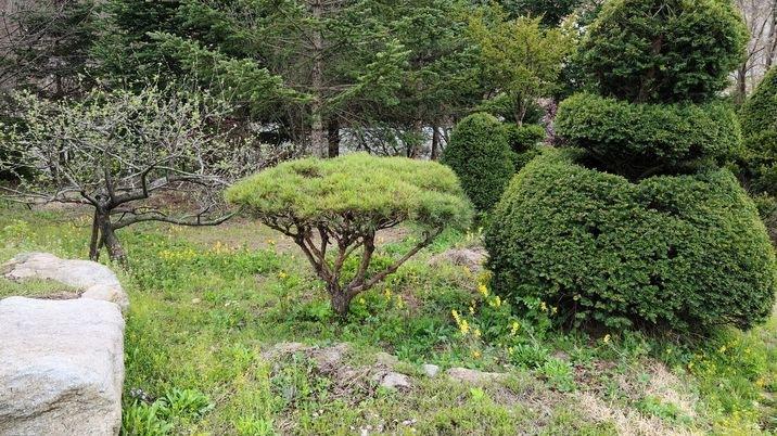 언덕위에있고정남향으로시야가트인전원주택지 500평