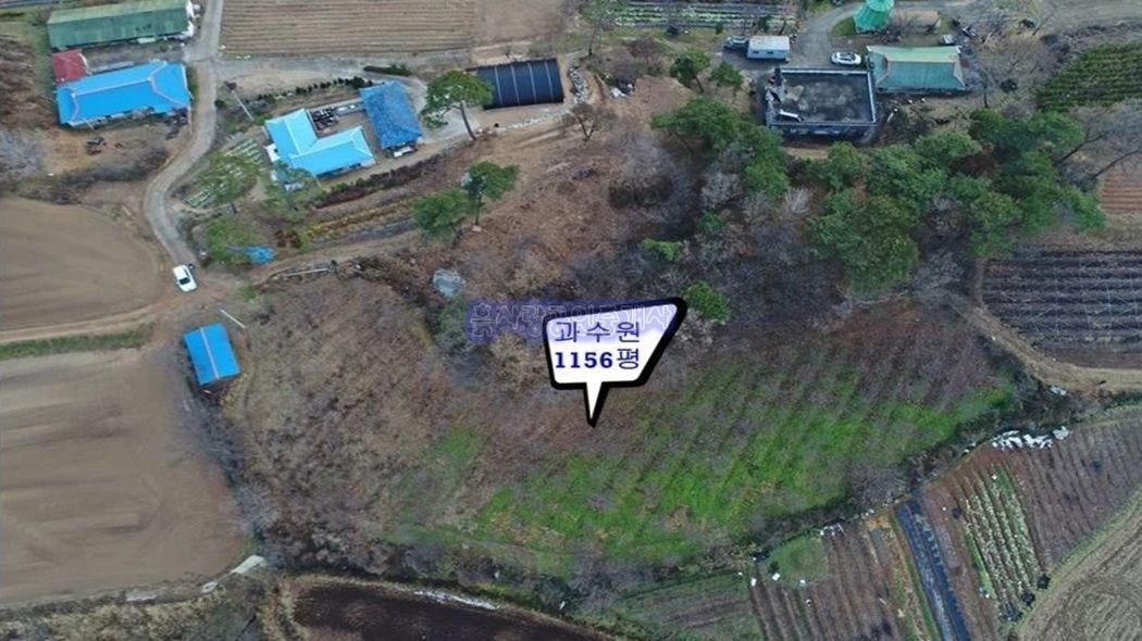 수익성 영농지 또는 전원주택지로 손색없는 1000평대 과수원부지