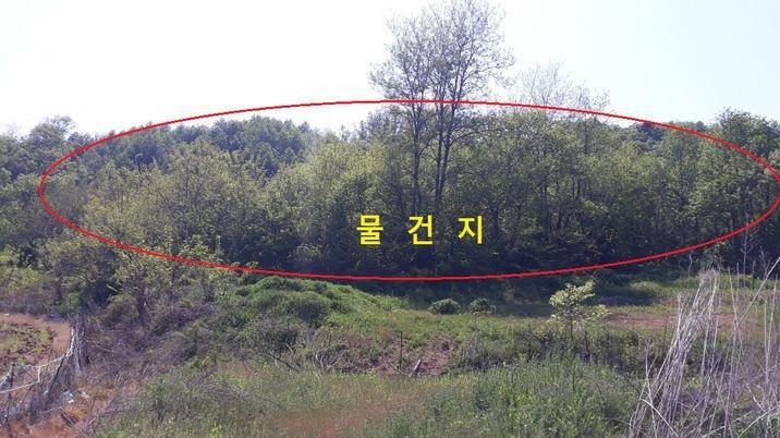 홍성시내 7분거리, 약초 재배용 '임야' 초저가 급매물!