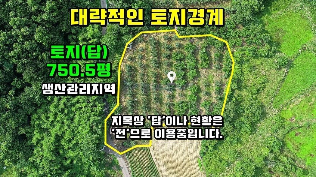 면소재지와 예당저수지 인근 남향의 토지