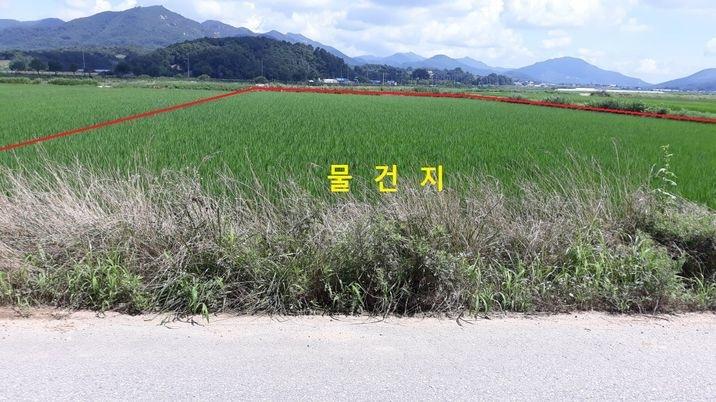 4차선 옆, 농로와 접해 있는 농사 지을 땅