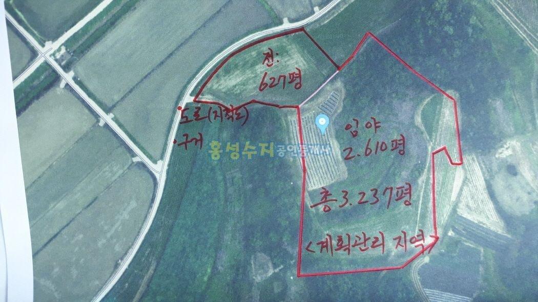 반 가격에 나온 계획관리지역 큼지막한 토지