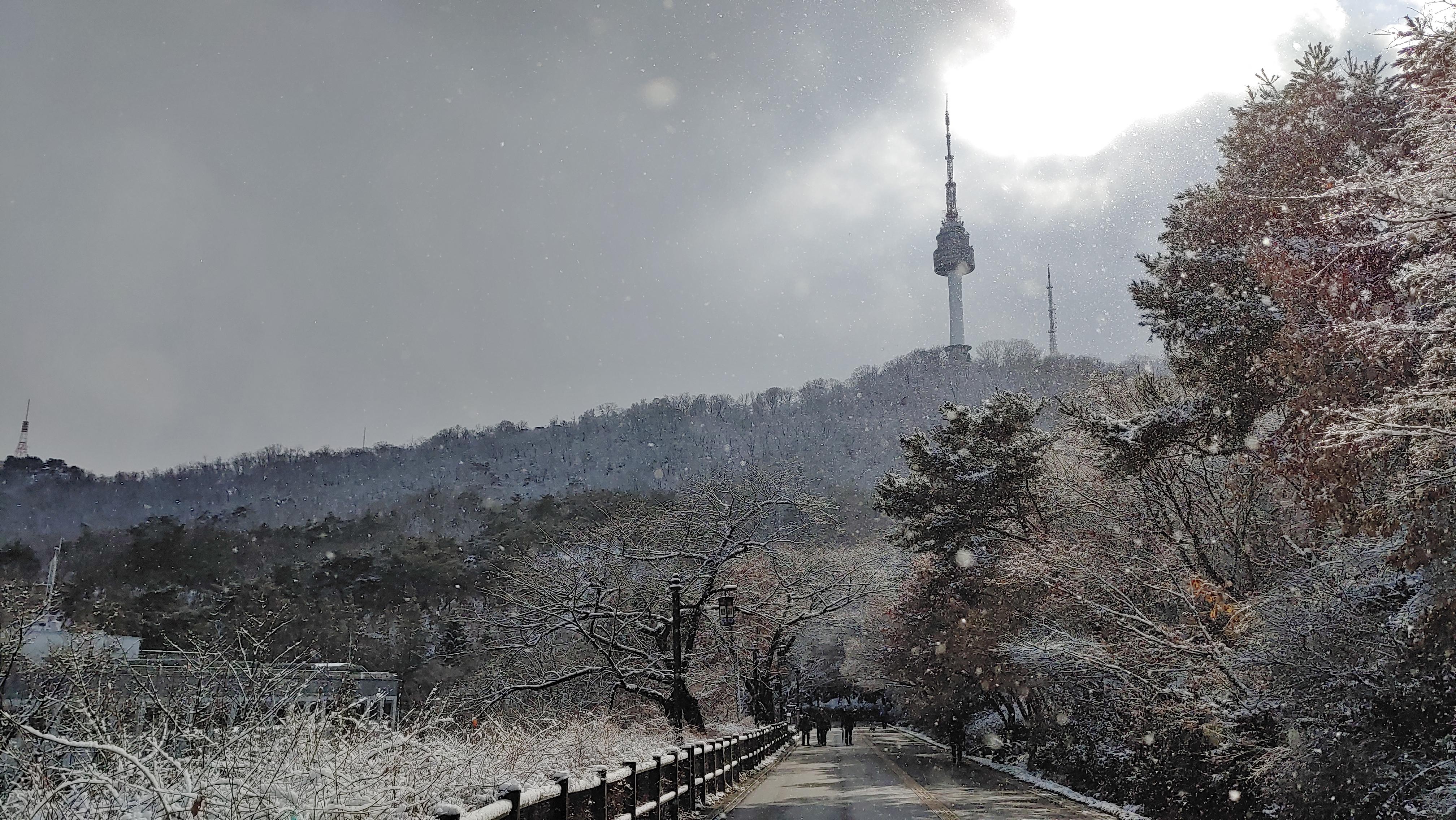 남산둘레길을 하얗게 만든 2월의 눈을 사진으로 담다.