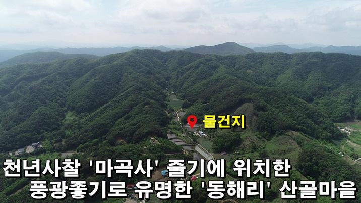 특급 청정지역!! '마곡사'줄기 '동해리'를 아시나요?