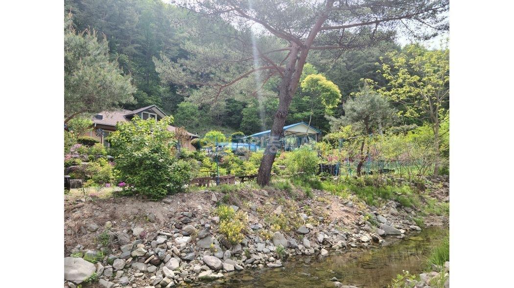 국유림자락에 남향으로 천연계곡에 접한 전원주택