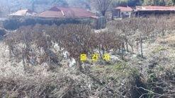 면소재지 가까운 곳, 한적한 마을 안에 전원주택용 토지