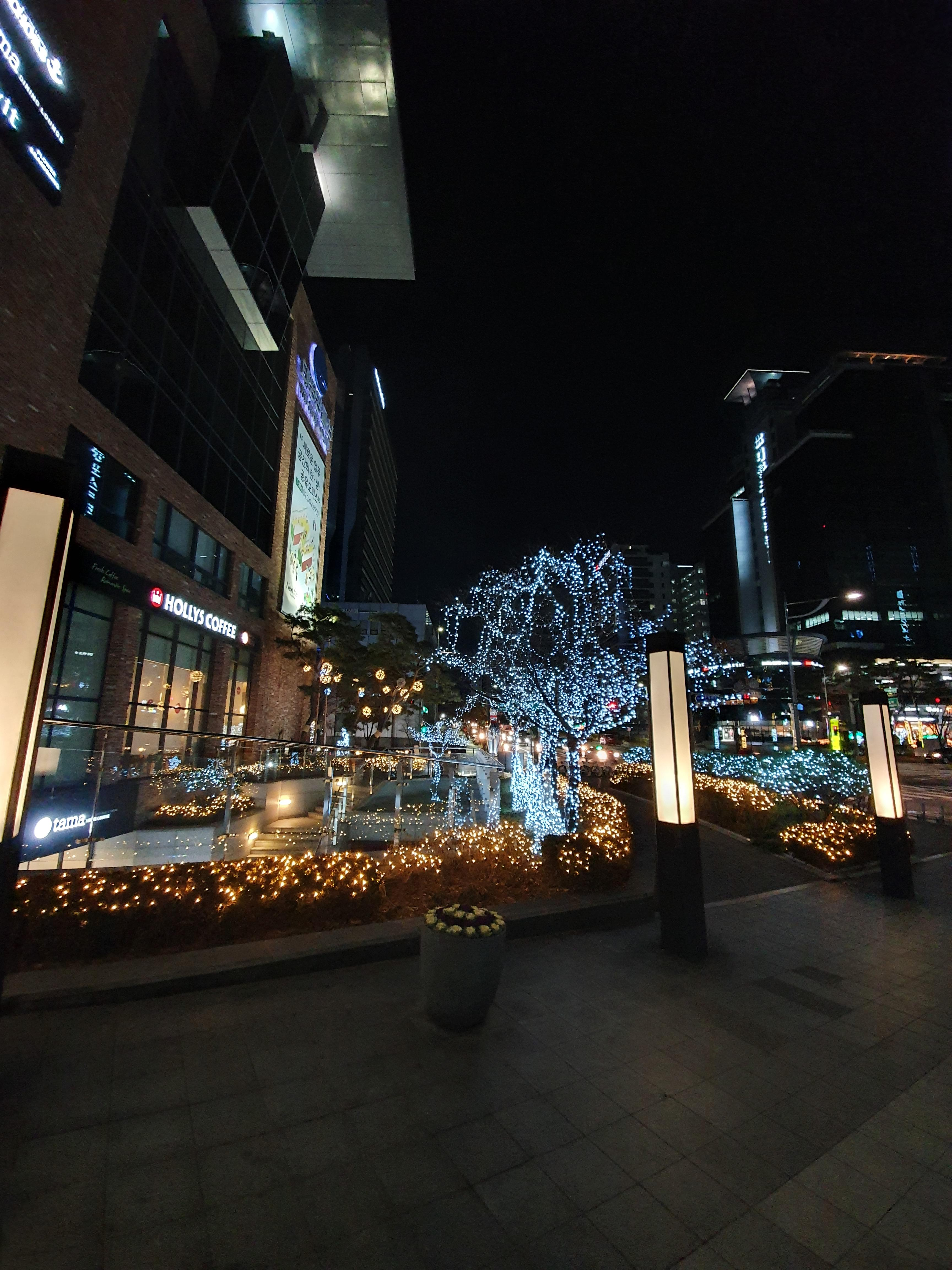 동네 겨울 야경