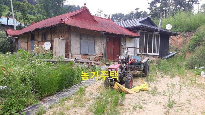 마을 안 맨 뒷쪽 '대지'에 있는 무허가 농가주택