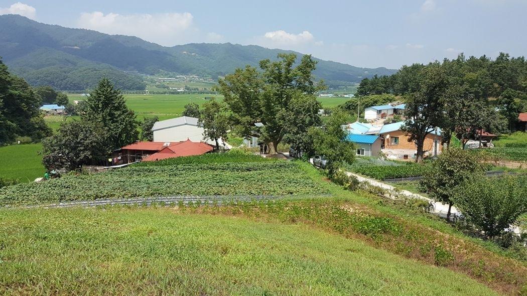 마을끝자락 언덕배기에 위치한 편안한 주택지