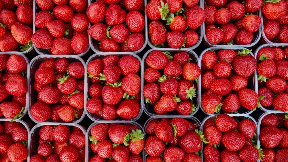 비싸지만 맛있는 딸기!