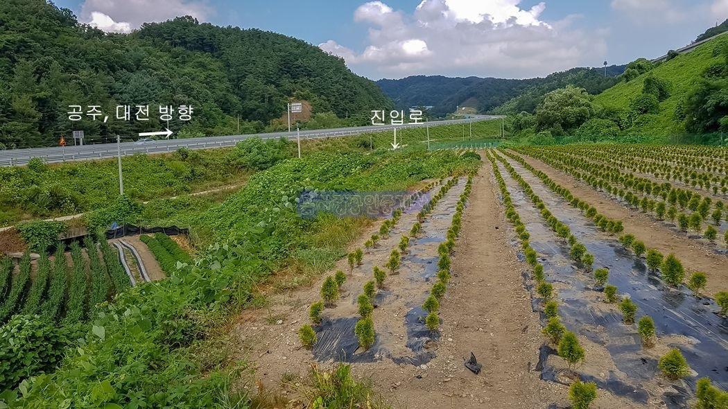 4차선 도로변 인근 접근성 괜찮은 농지원부용토지