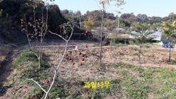 잘 지어진 농막과 큼지막한 텃밭이 있는 귀촌용 토지