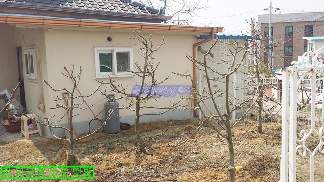 생활편의성 좋은 시내권 (예산읍)에 자리한 주택