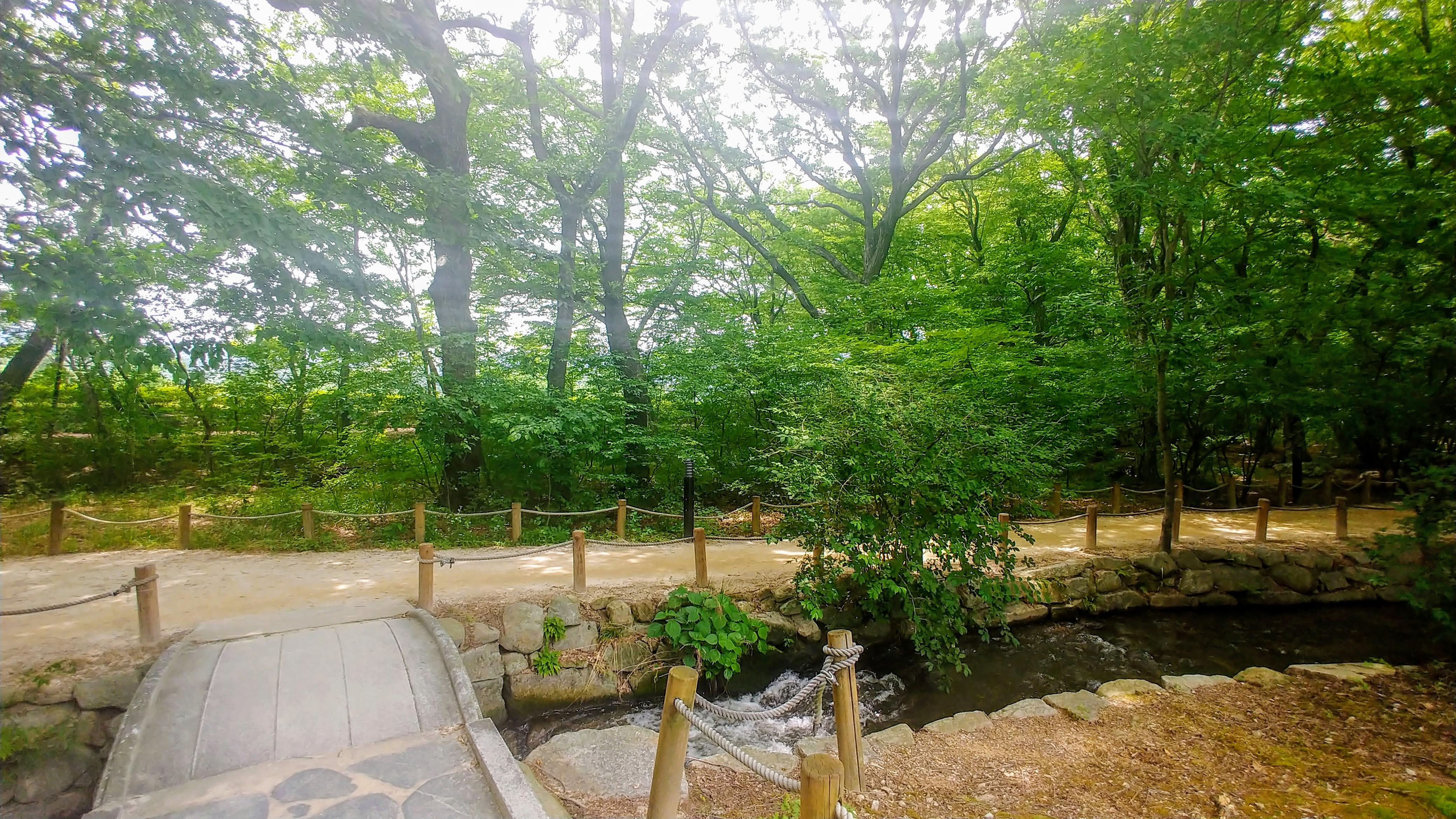 [행복찾기] 함양 상림공원 나들이 풍경