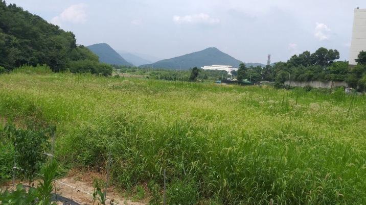 2종 일반 주거지역 내의 가장 저렴한 토지.
