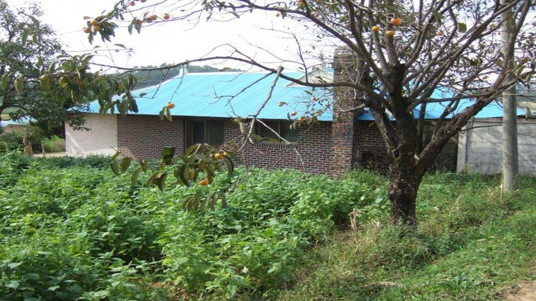 농가 구옥 있는 산자락 전원주택지