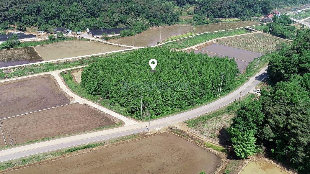 저수지 인근 2차선 도로 옆 관리지역 토지