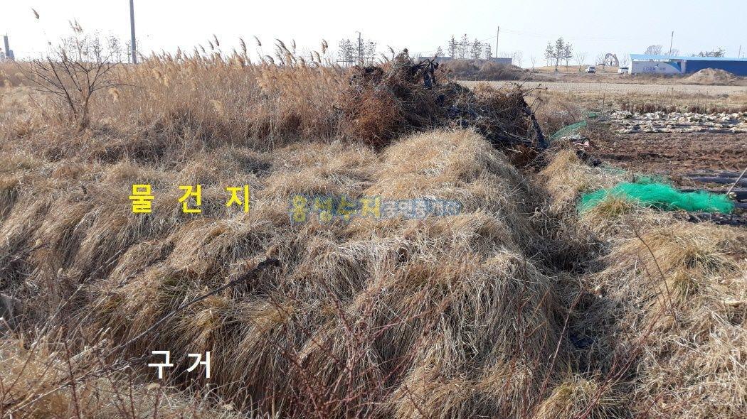 남당항 초입 어사리 수산시장과 회센터 중간에 있는 상가용 토지