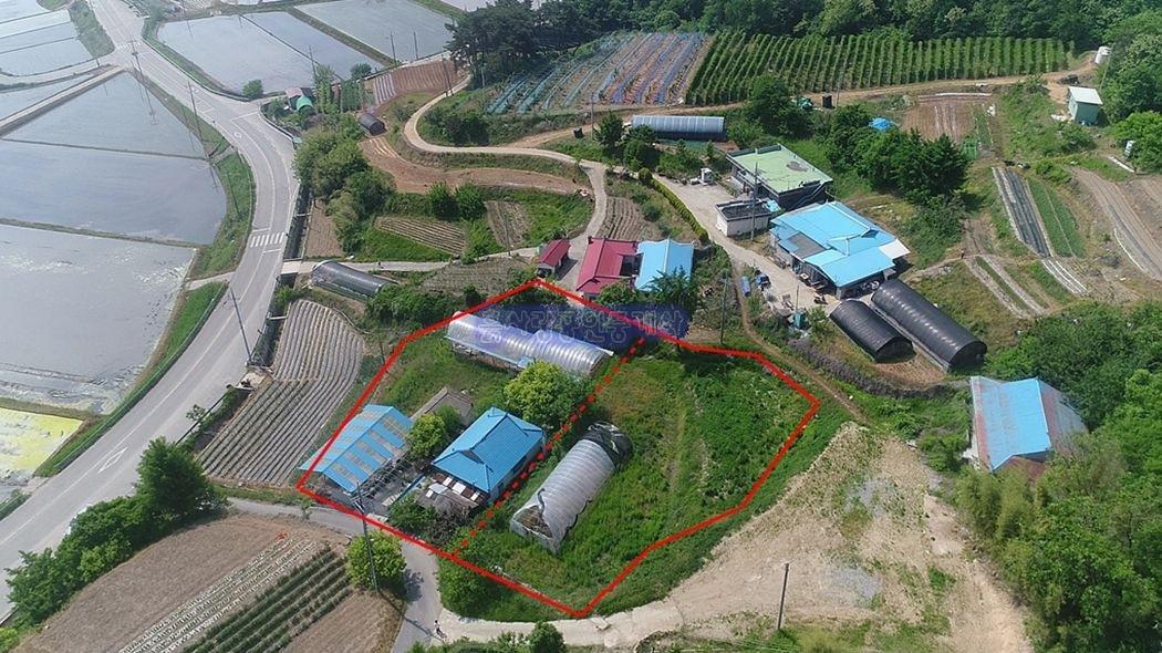 예당저수지 2분거리 내 농가주택과 추가 건축도 가능한 뒷마당