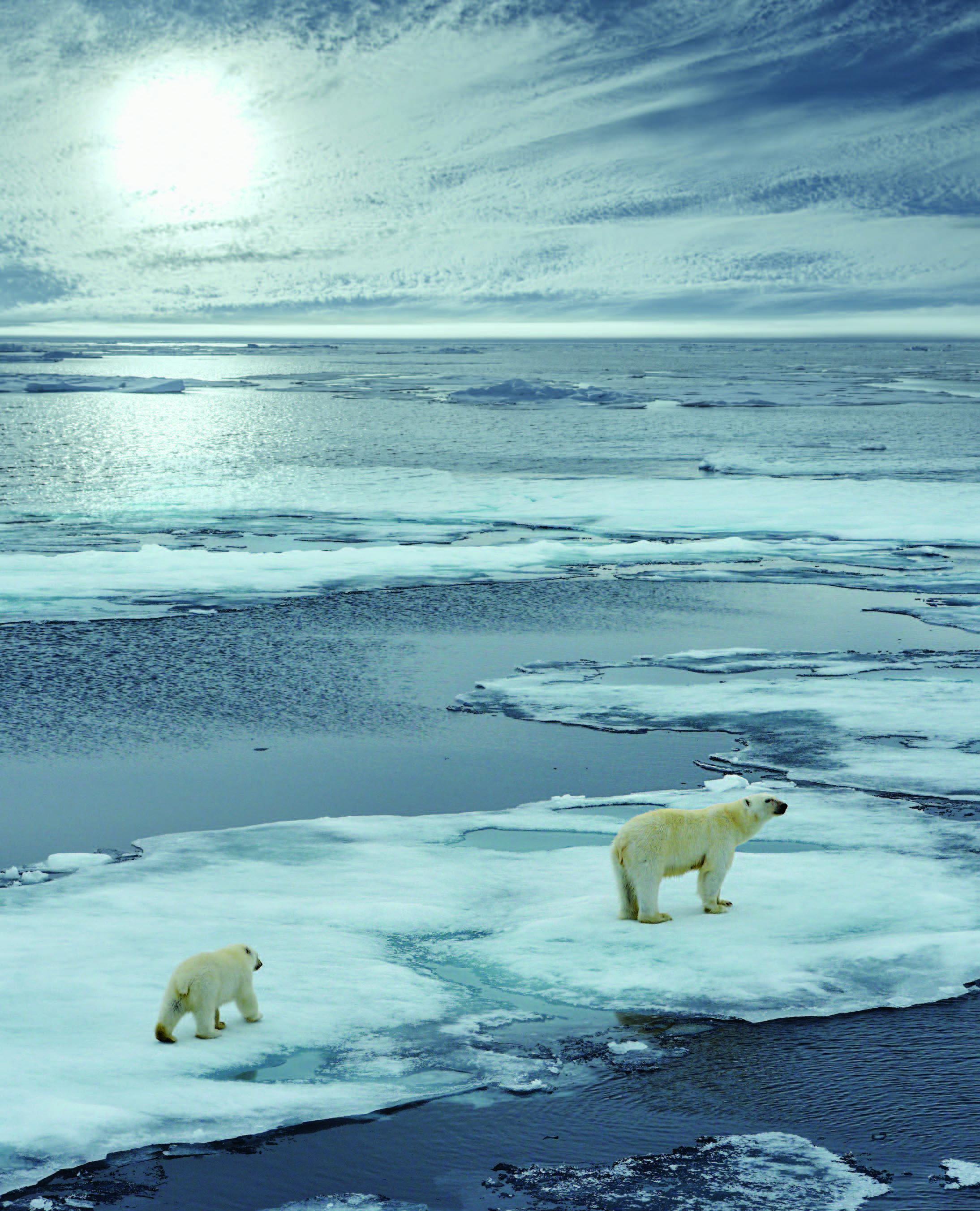 인류에 대한 환경의 역습, 지구촌 기후변화